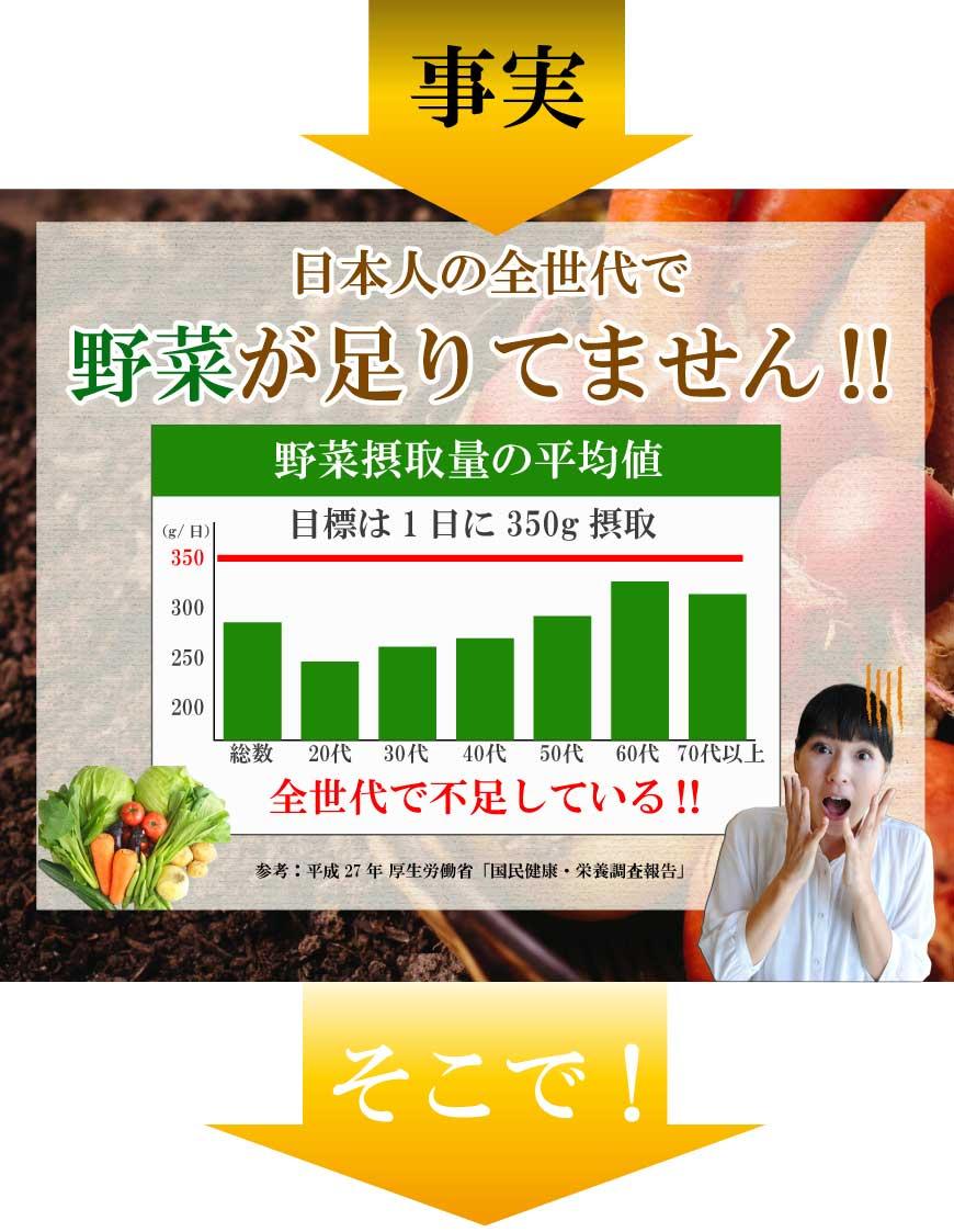 野菜不足厚生労働省