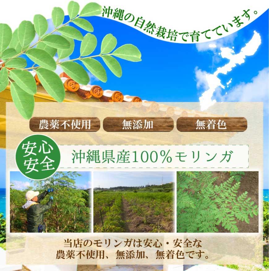 沖縄県産100%モリンガ使用